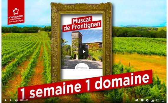 Frontignan Muscat sous les projecteurs de l'Office de Tourisme de Montpellier